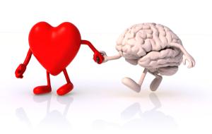 Srdce a mozek