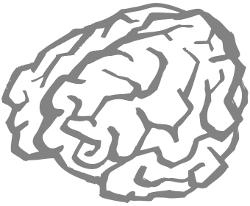 mozek-rovnovaha